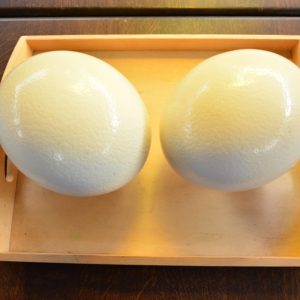 Decorative Ostrich Eggs.